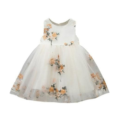 Mesh Party Dress Flowers Tulle - B / 12M - Kids & Babies